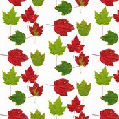 Rrleaf-fabric_shop_thumb