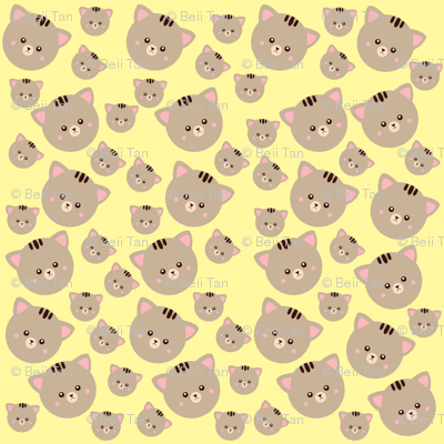 Kitty Craze
