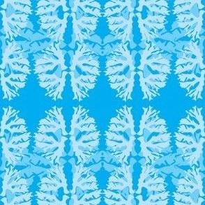 Flat corals/aqua