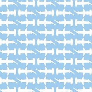 Hammerhead Sharks, Blue