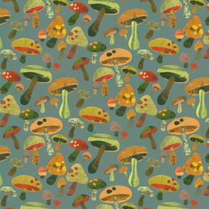 Mushroom ...