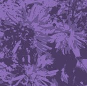 Rtone-on-tone_purple_asters_9_24_07_005_shop_thumb