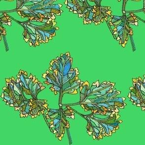 parsley in green