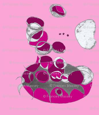 milkmolecules