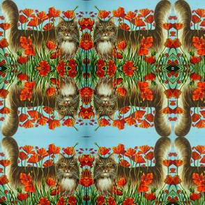 Cat & Poppies