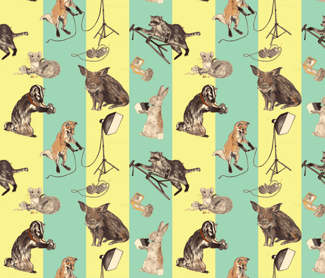 Wildlife Photographers-ed fabric by madeleine13 on Spoonflower - custom fabric