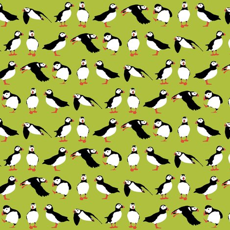 R_green_puffins_2015_st_sf_shop_preview