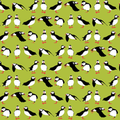 just puffins green small