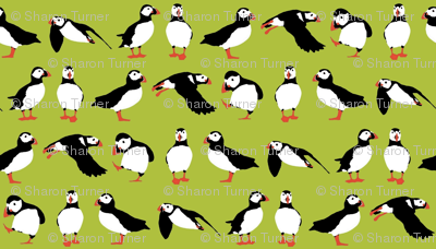 just small puffins (green)