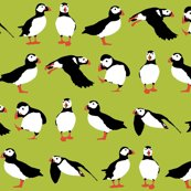 Rrrjust_puffins_green_st_2560_sf_shop_thumb