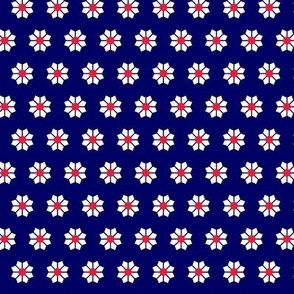 Star flowers - Tricolor