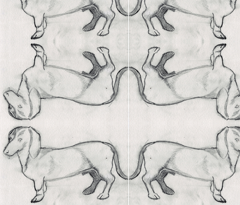dachsisketch fabric by borealiscolor on Spoonflower - custom fabric