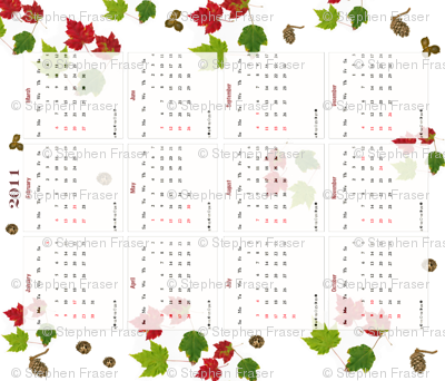 2011 Tea Towel Calendar