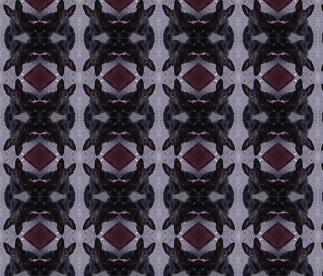 Sadiesquare fabric by murrday on Spoonflower - custom fabric