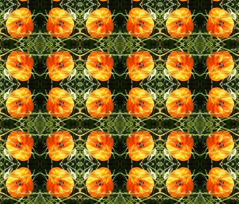 Colleen's poppy fabric by murrday on Spoonflower - custom fabric