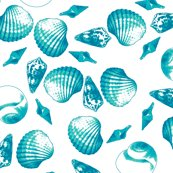 Rrshell-mell_-_tropical_seas-white_indexed_shop_thumb