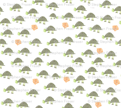 turtle-fabric