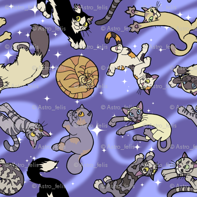 Floaty Cats in Space