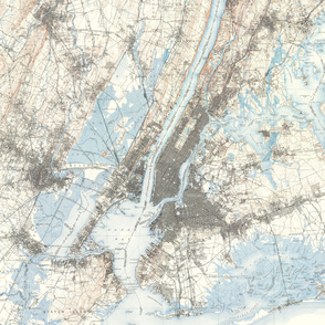 Old New York map