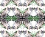 Rkoko_8x8comp_thumb