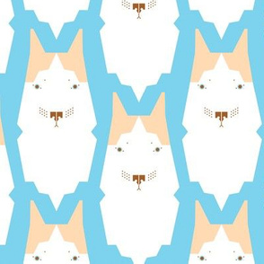 Rdogpattern2-01_shop_thumb