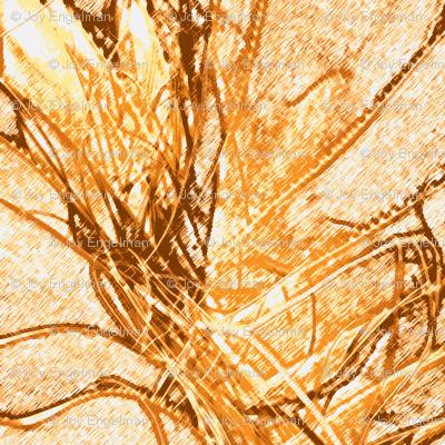 Organics in Orange