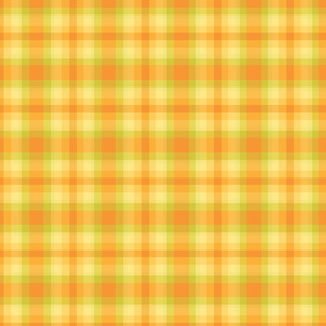 yellow and green plaid