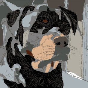 DOG-pencil_over_color_block