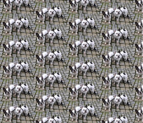 2 dogs fabric by frau-h on Spoonflower - custom fabric