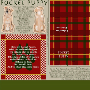 Rpocket_puppy_-_lab_shop_thumb