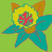 Daffodil_Cool150