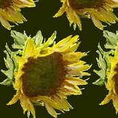 Rsunflower_pattern_rainlongson_shop_thumb