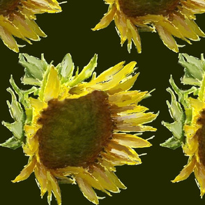 Sunflower_pattern_RainLongson
