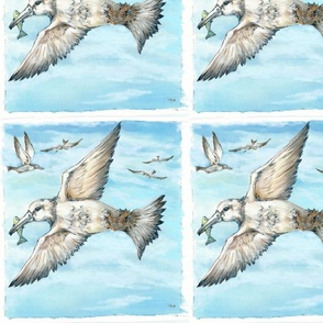 Lu_beach_Quilt_gulls_one