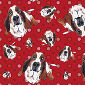 Basset Hound in Red