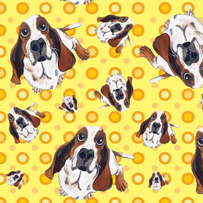 Basset Hound in Yellow