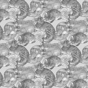 Rsnugglecats-grey_shop_thumb