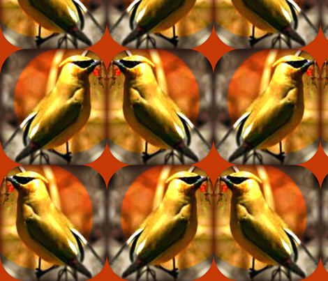 Cedar Waxwings fabric by robin_rice on Spoonflower - custom fabric