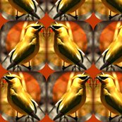 Rcedar_waxwing__thanks_vicki_cheatwood__ed_ed_ed_ed_shop_thumb