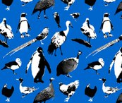 Birds_fabric_shop_thumb