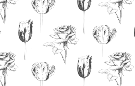 Sketchy Botanical fabric by pattysloniger on Spoonflower - custom fabric