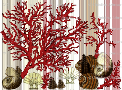 Red Coral and sea shells / mirror