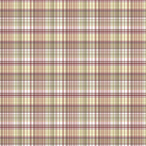Red Coral Beach - bleached-out plaid