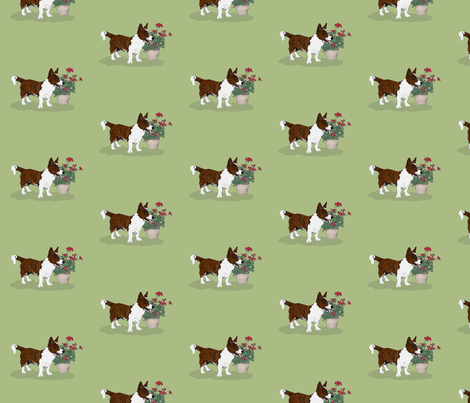 Brindle Cardigan Welsh Corgi fabric by hauteideas on Spoonflower - custom fabric