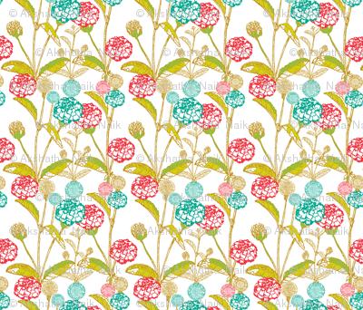 marigold blooms