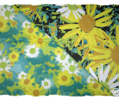 Rrwild_daisy_in_botanicals_pallet_comment_64189_preview