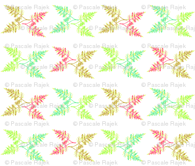 Botanical_Fern_white_Kalou_2011