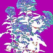 Rfabrics_009_ed_ed_ed_ed_ed_ed_ed_shop_thumb