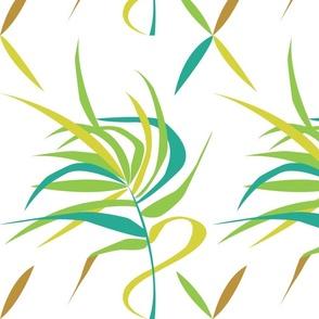 Fripp Palm