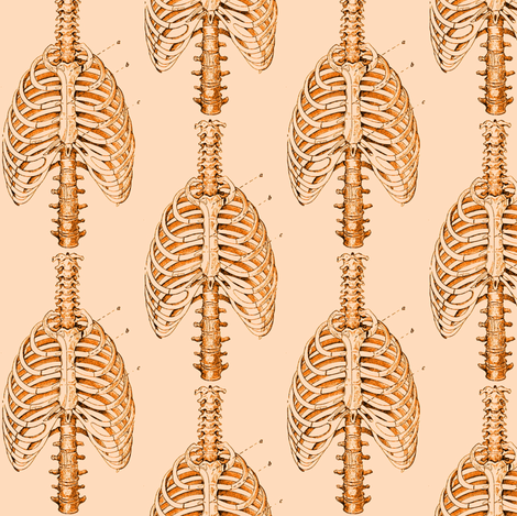 Ribcage5 fabric by nalo_hopkinson on Spoonflower - custom fabric